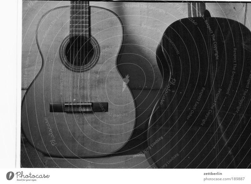 Mein Bruder und ich Musik Holz Kultur Konzert Gitarre Steg Musikinstrument Lied akustisch Flamencotänzer Saiteninstrumente Hausmaus