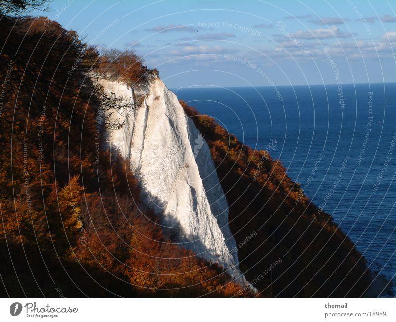 Kreidefelsen Wasser Meer Ferien & Urlaub & Reisen Ferne Herbst Deutschland Felsen Insel Aussicht Ostsee Rügen Königsstuhl