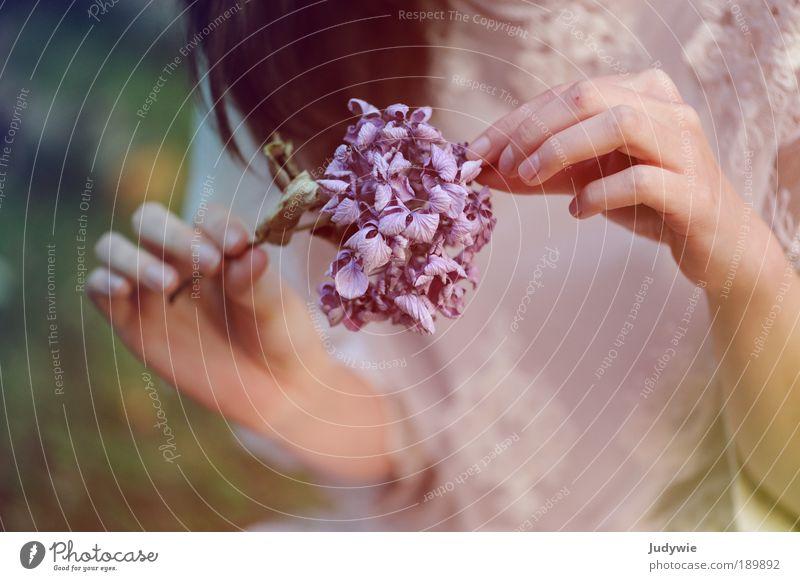 Phantasie schön Frau Erwachsene Hand Natur Pflanze Blume Kleid langhaarig alt Liebe dünn fantastisch weich schwarz Romantik Märchen Hortensie vertrocknet sanft