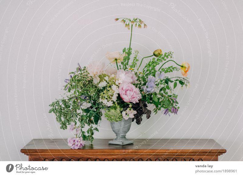Asymmetrisch Häusliches Leben Wohnung Innenarchitektur Dekoration & Verzierung Raum Wohnzimmer Muttertag Rose Efeu Farn Blatt Blüte Pfingstrose Gartenwicke Mohn