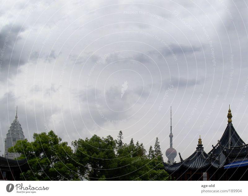 Kontraste-Shanghai Himmel Ferien & Urlaub & Reisen Stadt Pflanze Baum Gefühle Architektur Stein Metall Glas Dach beobachten Technik & Technologie Kommunizieren
