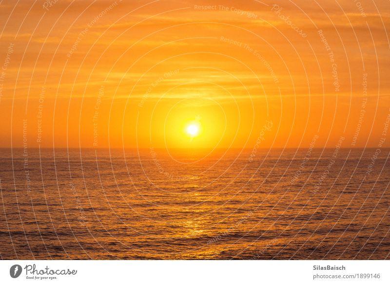 Natur Ferien & Urlaub & Reisen Sommer Sonne Landschaft Erholung Freude Umwelt Leben Gefühle Stimmung Erfolg Wind Fröhlichkeit Perspektive Schönes Wetter