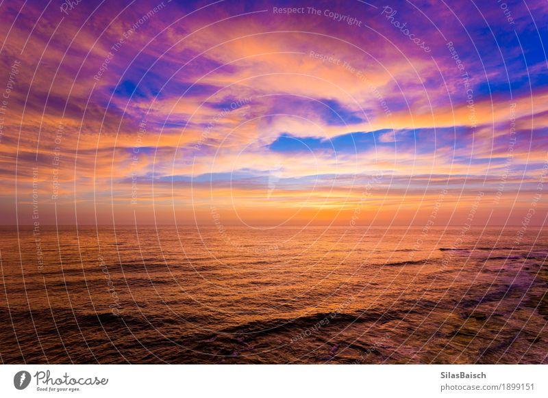 Natur Wasser Landschaft Einsamkeit Freude Strand Umwelt Senior Küste Freiheit Wellen elegant Ordnung ästhetisch Beginn genießen