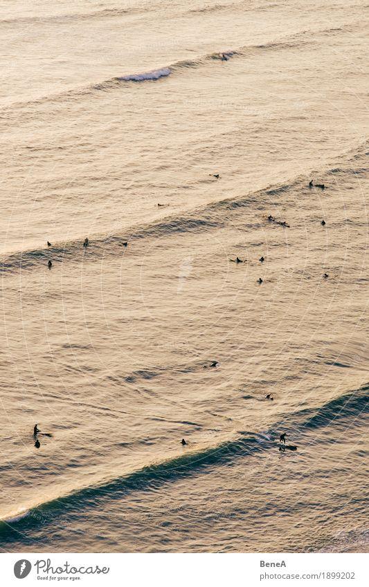 Surfing in Lima Mensch Wasser Meer Erholung Freude Sport Küste Freiheit Menschengruppe Freizeit & Hobby Wellen Aktion Aussicht genießen Abenddämmerung Sportler