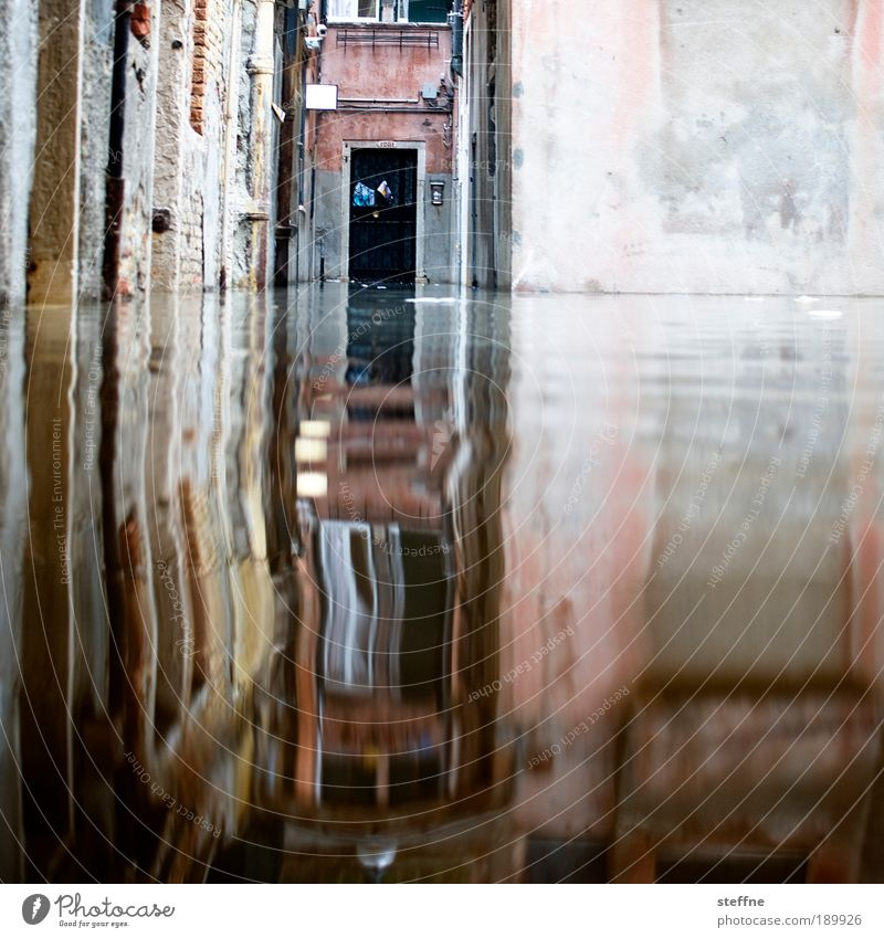 acqua alta Wasser Wand Mauer Tür Italien außergewöhnlich Venedig Flut Hochwasser Überschwemmung