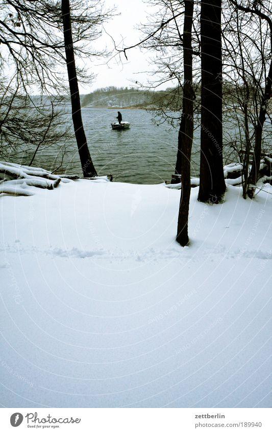 Sacrow Wasser Baum Winter ruhig Einsamkeit Wald Schnee Küste See Wasserfahrzeug Freizeit & Hobby Seeufer Baumstamm Flussufer Angeln Teich