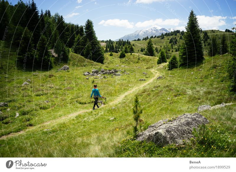 Frau wandert durch den Plamorter Boden, Vinschgau, Italien Mensch Natur Sonne Erholung Ferne Wald Berge u. Gebirge Erwachsene Wege & Pfade Sport Gras gehen
