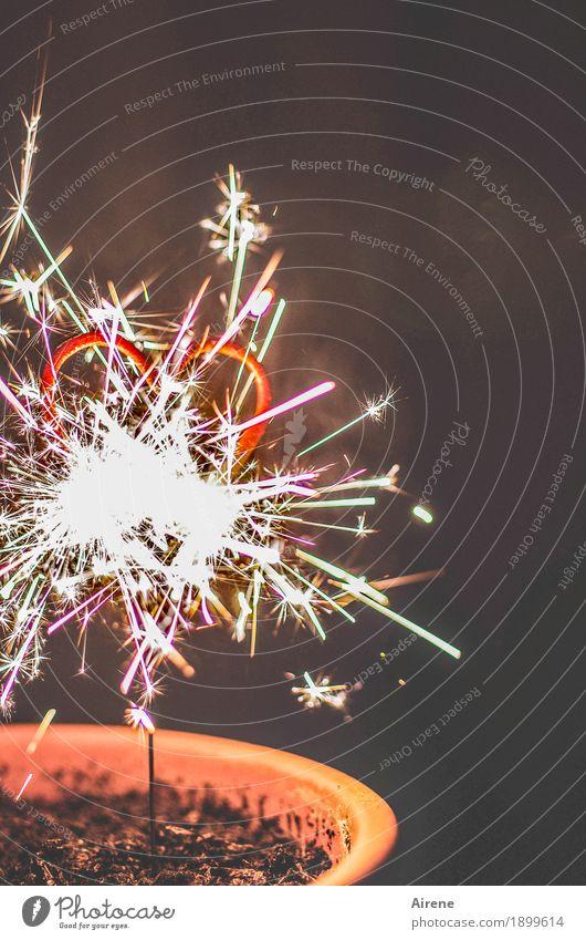heiße liebe Party Feste & Feiern Valentinstag Muttertag Weihnachten & Advent Silvester u. Neujahr Hochzeit Zeichen Herz Funken Feuerwerk Wunderkerze glänzend