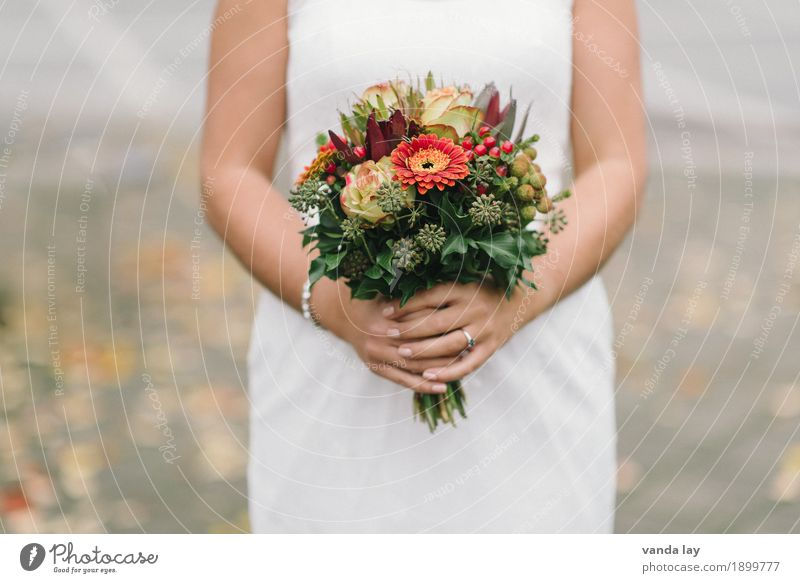 Hochzeit Feste & Feiern Junge Frau Jugendliche Erwachsene Hand 1 Mensch 18-30 Jahre Blume Gerbera Rose Vorfreude Einigkeit Beginn Religion & Glaube Leben Liebe