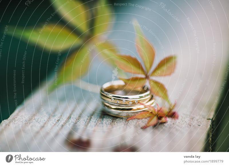 Trauringe Hochzeit Mode Ring Ehering silber Gold Diamant Diamantring Zusammensein Liebe Treue Team Teamwork Trennung Farbfoto Außenaufnahme Menschenleer
