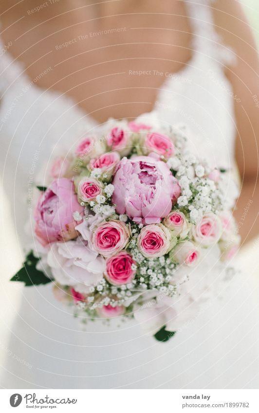 Brautstrauß Mensch Frau Jugendliche Junge Frau Blume Erwachsene Leben Religion & Glaube Liebe feminin rosa Hochzeit Ziel Zusammenhalt Rose Kitsch