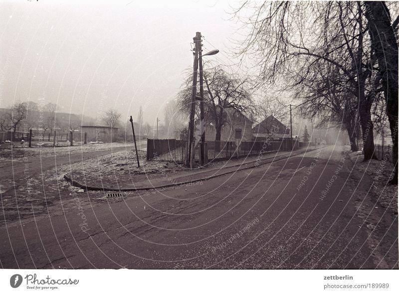 Dorf Straße Straßenverkehr Dorfstraße Wege & Pfade Abzweigung Gabel Verschiedenheit abbiegen Verkehr Herbst Oktober November Nebel Bauernhaus Hof Brandenburg