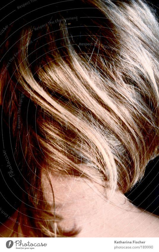 High-Lights Stil schön Haare & Frisuren feminin Junge Frau Jugendliche Erwachsene Kopf Nacken 1 Mensch Kunst brünett blond langhaarig Strähnchen Haarsträhne