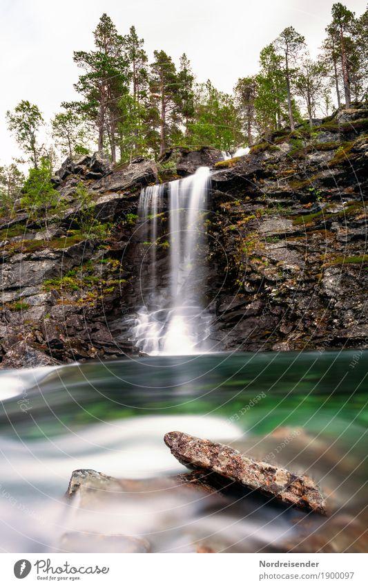 Lebensquell Ausflug Natur Landschaft Urelemente Wasser Schönes Wetter Baum Wald Felsen Berge u. Gebirge Fluss Wasserfall Flüssigkeit Abenteuer Einsamkeit