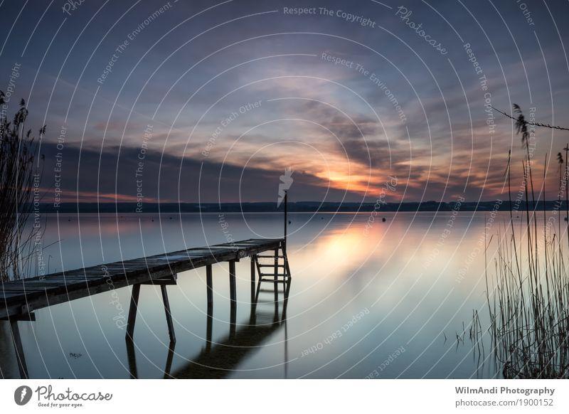 Absolute Ruhe Sonne Landschaft Wasser Himmel Wolken Sonnenaufgang Sonnenuntergang Frühling Seeufer Schwimmen & Baden genießen träumen Stimmung Zufriedenheit
