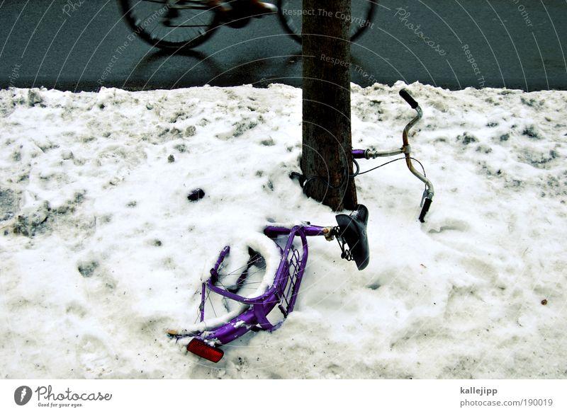 prähistorisch Baum Winter Umwelt Straße kalt Schnee Eis Fahrrad Freizeit & Hobby dreckig Klima Verkehr Geschwindigkeit Frost Lifestyle fahren