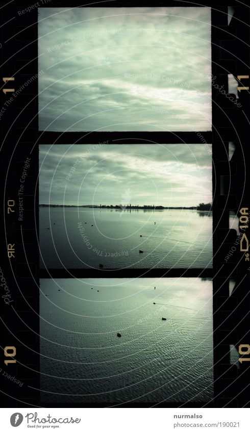 3mal1 Havel Natur Wasser Himmel Winter Strand Landschaft Vogel Küste Kunst Wetter Umwelt Horizont Fisch Insel Fluss