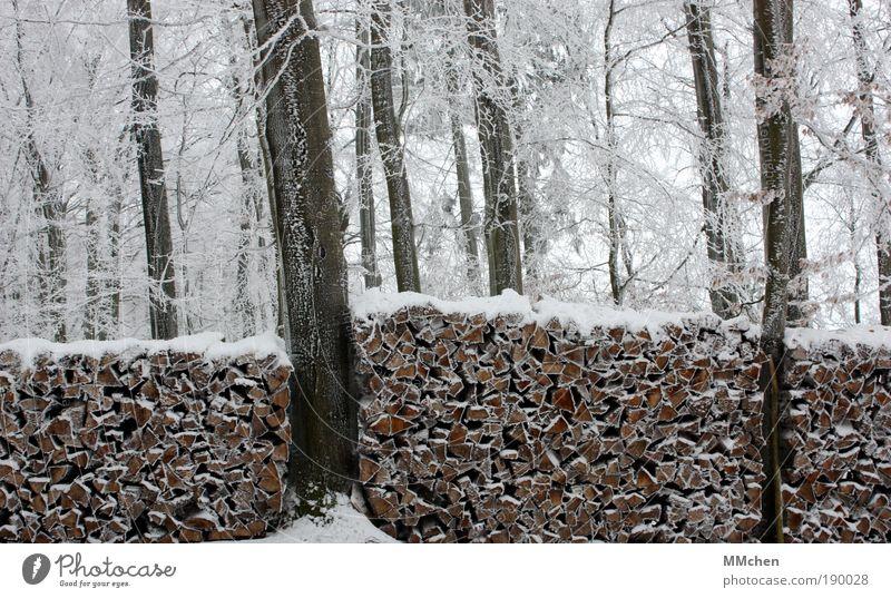 vorher/nachher weiß Wasser Pflanze Baum Winter Wald Schnee Mauer Holz Garten braun Eis Sträucher Frost Grenze Jagd