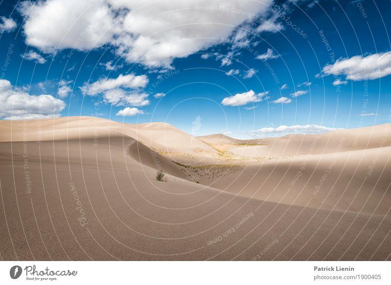 Great Sand Dunes National Park, Colorado Wohlgefühl Zufriedenheit Sinnesorgane Erholung ruhig Meditation Ferien & Urlaub & Reisen Ferne Freiheit Expedition