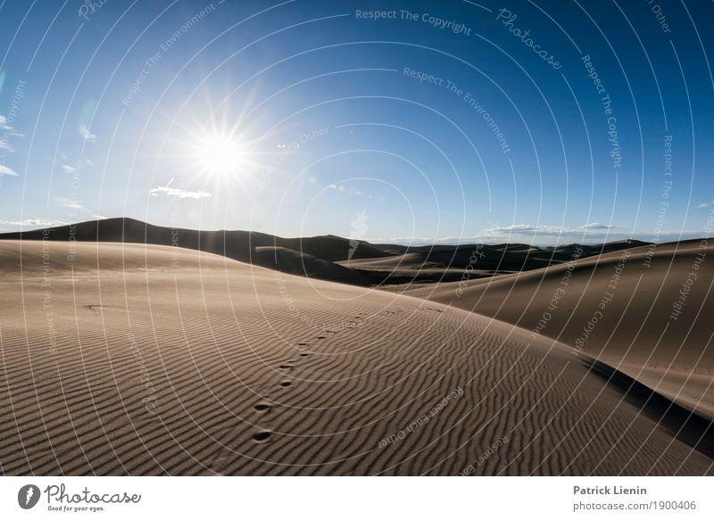 Great Sand Dunes National Park, Colorad Zufriedenheit Erholung ruhig Meditation Ferien & Urlaub & Reisen Abenteuer Freiheit Sommer Umwelt Natur Landschaft