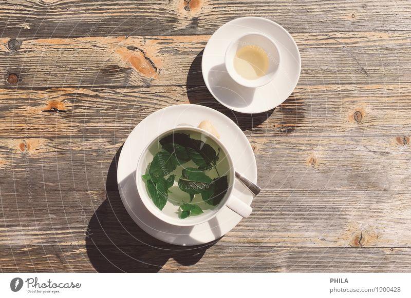 Minztee grün weiß ruhig gelb Glück Lebensmittel braun Zufriedenheit genießen Lebensfreude Kräuter & Gewürze Getränk Wellness Wohlgefühl Gelassenheit harmonisch