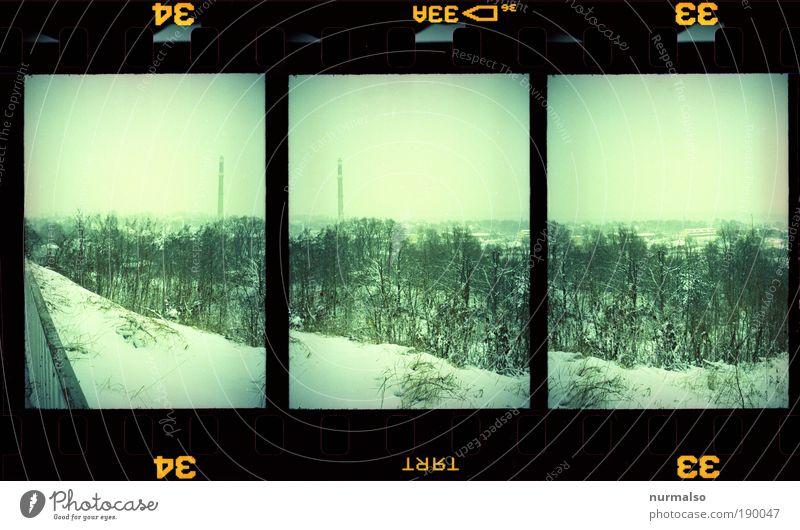 Winteraussicht Natur Winter Wald kalt Park Landschaft Wetter Filmmaterial trist Klima analog Schornstein Zeit Wiederholung Symmetrie Dia