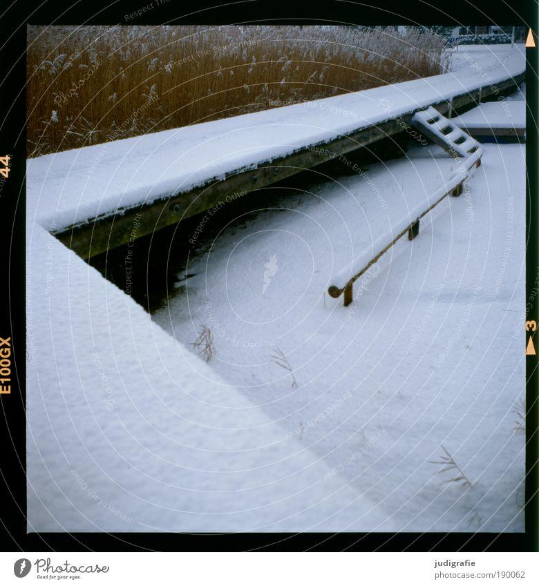 Steg Natur Winter Ferien & Urlaub & Reisen ruhig kalt Schnee Gras Wege & Pfade See Landschaft Eis Küste Wetter Umwelt Treppe Klima