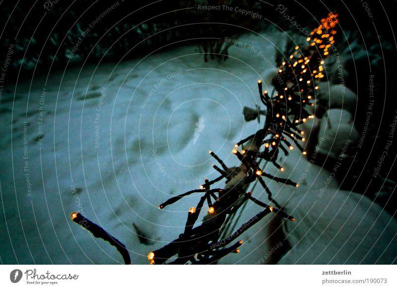 Weihnachten Lichterkette vorweihnachtszeit Weihnachtsdekoration Tradition Dekoration & Verzierung Schmuck verschönern Stern (Symbol) Vorfreude Vorgarten dunkel