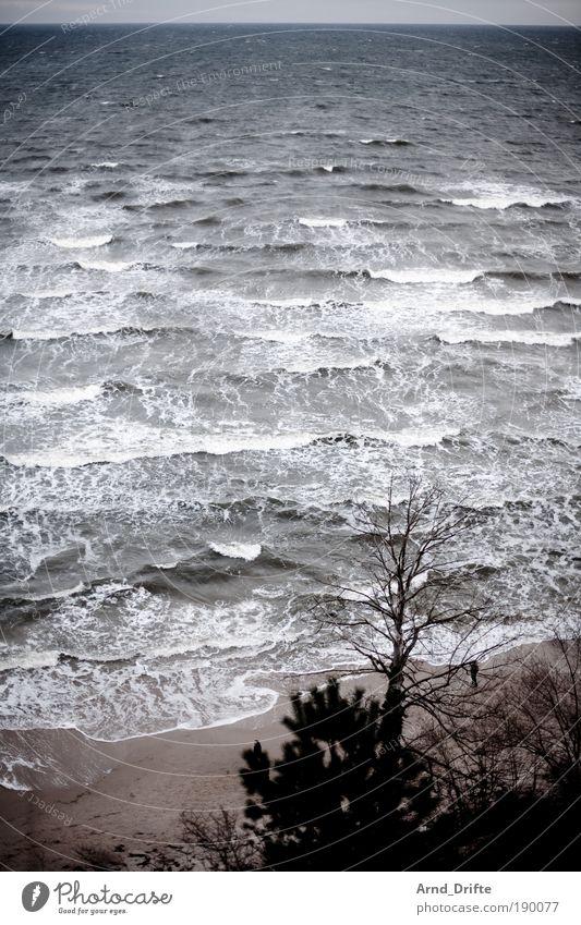 Winterstrand Natur Wasser Meer Winter Strand Ferien & Urlaub & Reisen Einsamkeit Ferne Sand Landschaft Wellen Küste Wind Ostsee Fernweh Kur