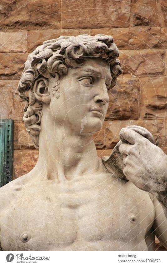 Michelangelo's David Kunst Kunstwerk Skulptur Florenz Italien Europa Stadtzentrum Sehenswürdigkeit Wahrzeichen Stein Kultur Tourismus Farbfoto Außenaufnahme