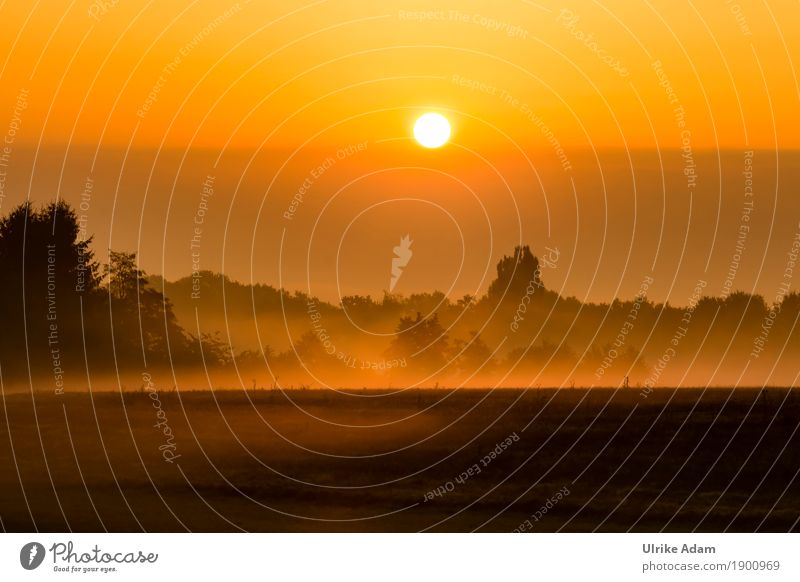 September Nebel Stil Design einrichten Innenarchitektur Dekoration & Verzierung Tapete Bild Postkarte Poster Natur Landschaft Himmel Sonne Sonnenaufgang