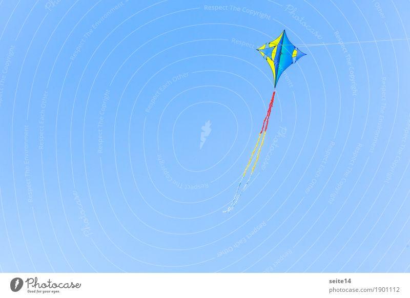 Drachen steigen lassen, Wind, Blauer Himmel, Textfreiraum Natur Himmel (Jenseits) blau Sommer schön Sonne Lifestyle Herbst Hintergrundbild Junge Glück Freiheit