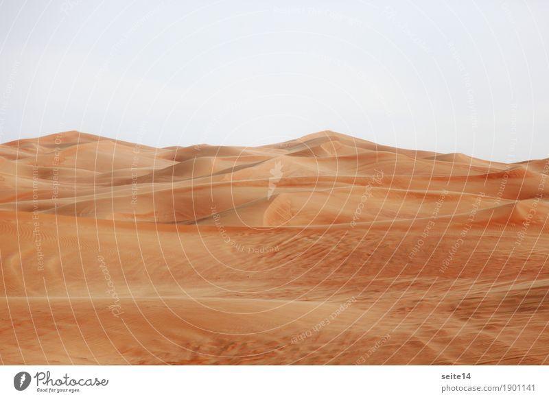 Sand Düne, Sanddüne, Wüste Stranddüne Wärme heiß Klimawandel Dubai Abu Dhabi Vereinigte Arabische Emirate wandern Wandel & Veränderung Wanderausflug Expedition
