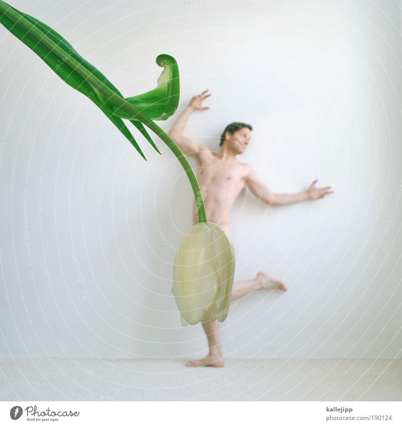 blumenkind Mensch Mann Männlicher Akt Blume Blatt Freude Erwachsene Blüte Frühling feminin Kunst Lifestyle maskulin elegant Körper Tanzen