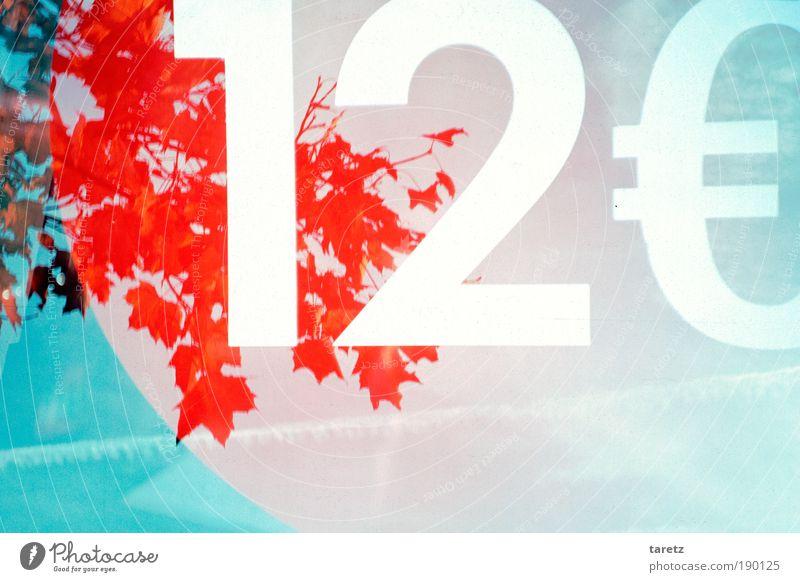 Umwelt: 12 Euro Natur Baum Fenster Ziffern & Zahlen Eurozeichen blau rot Farbe Handel Surrealismus Umweltschutz Doppelbelichtung Kosten Preisschild Farbfoto
