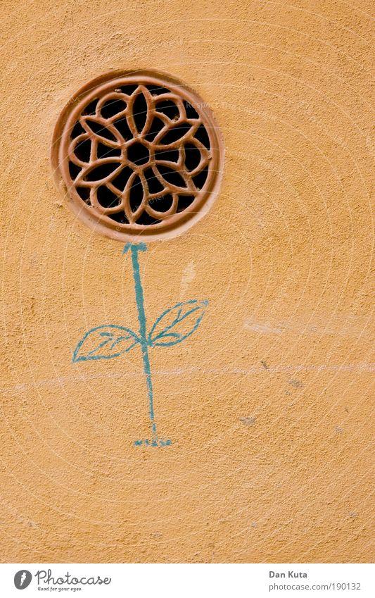 Heute wird gefeiert! Blume Wand lustig Mauer Fassade Wachstum Dekoration & Verzierung Kreativität Idee historisch Spanien Gemälde Putz Basteln Garten Kunstwerk