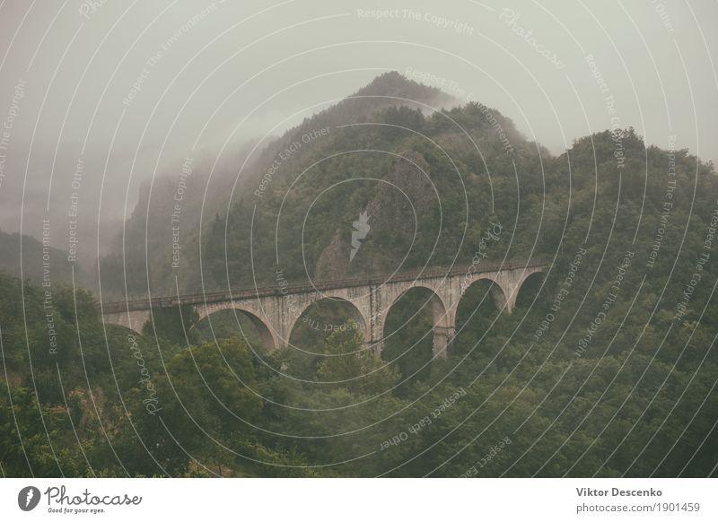 Die alte Steinbogen-Eisenbahnbrücke schön Ferien & Urlaub & Reisen Tourismus Berge u. Gebirge Natur Landschaft Himmel Nebel Baum Park Wald Hügel Brücke grün Tal