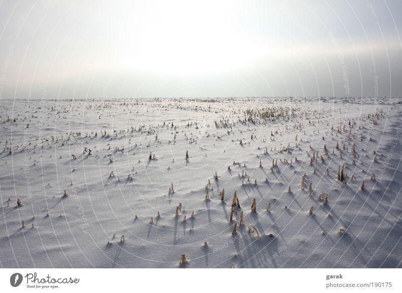 winter.zeit Himmel Winter Schnee Feld Erde