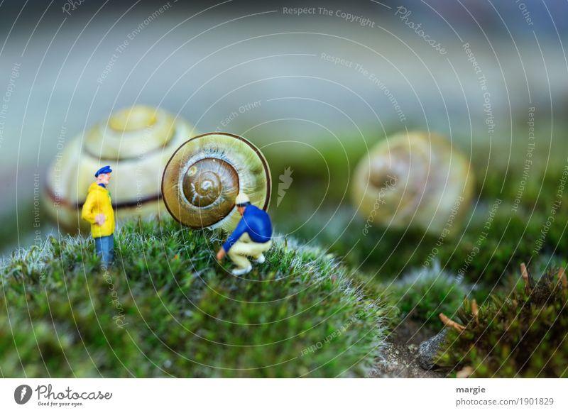 Miniwelten - Nehmen wir dies Haus? Gartenarbeit Baustelle Handwerk sprechen Mensch maskulin Mann Erwachsene 2 Pflanze Gras Moos Grünpflanze Tier Wildtier