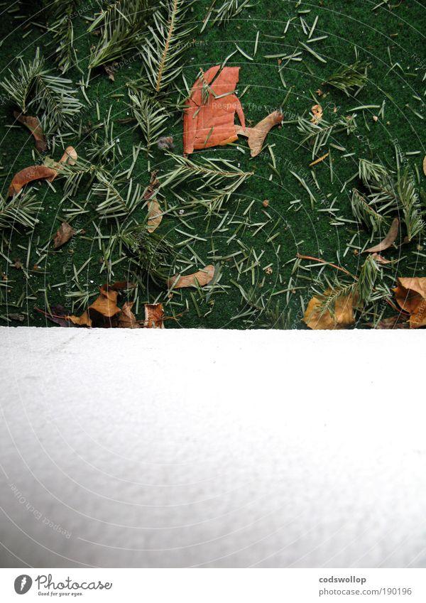 überreste von weihnachten mit textfreiraum unten weiß grün Winter trist Balkon Januar Kunstrasen Kiefernnadeln