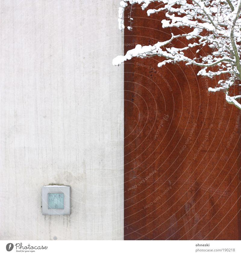 Kontraste Natur Baum Pflanze Winter kalt Schnee Wand Mauer Umwelt Ast Rost
