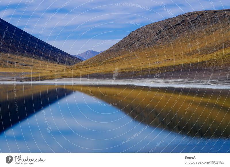 Spiegelung von Bergen in einer Lagune in der Atacama-Wüste Abenteuer Ferne Safari Expedition Berge u. Gebirge Umwelt Natur Landschaft Pflanze Wasser Himmel