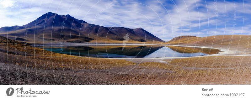 Panorama mit Lagune und Vulkan in der Atacama-Wüste Umwelt Natur Landschaft Pflanze Gras Sträucher Moos Hügel Berge u. Gebirge Anden Küste Moor Sumpf Teich See