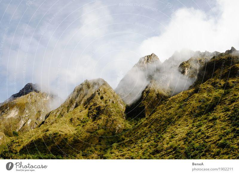 Gipfel von grün bewachsenen Bergen in den Anden zwischen Wolken Abenteuer Expedition Berge u. Gebirge wandern Klettern Bergsteigen Umwelt Natur Landschaft