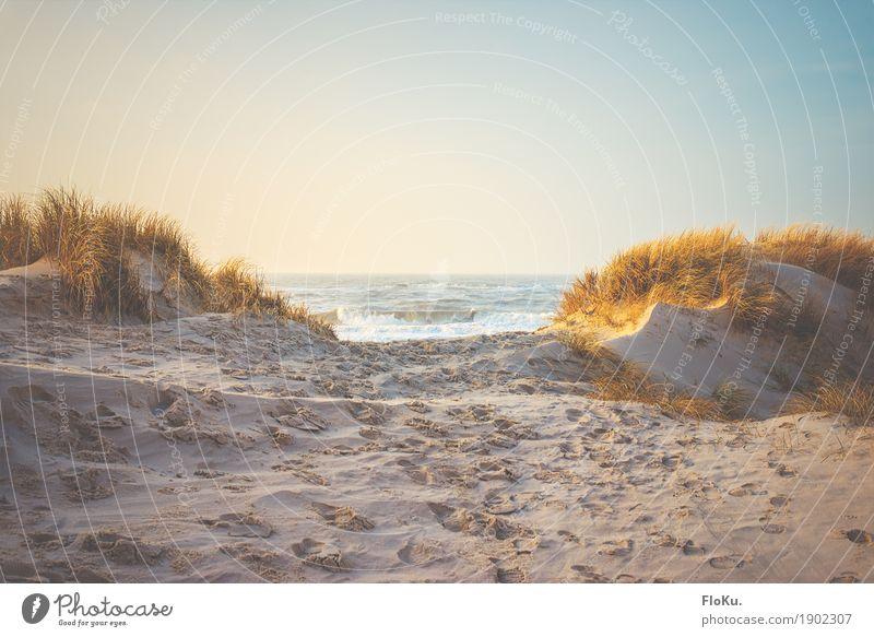 Blick aufs Meer Ferien & Urlaub & Reisen Ferne Freiheit Sommerurlaub Strand Wellen Umwelt Natur Landschaft Urelemente Sand Wasser Wolkenloser Himmel Horizont