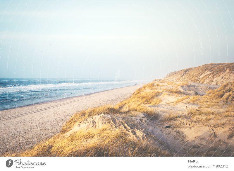Dänische Nordseeküste Himmel Natur Ferien & Urlaub & Reisen blau Wasser Meer Landschaft Ferne Strand Umwelt gelb natürlich Küste Freiheit Stimmung Sand