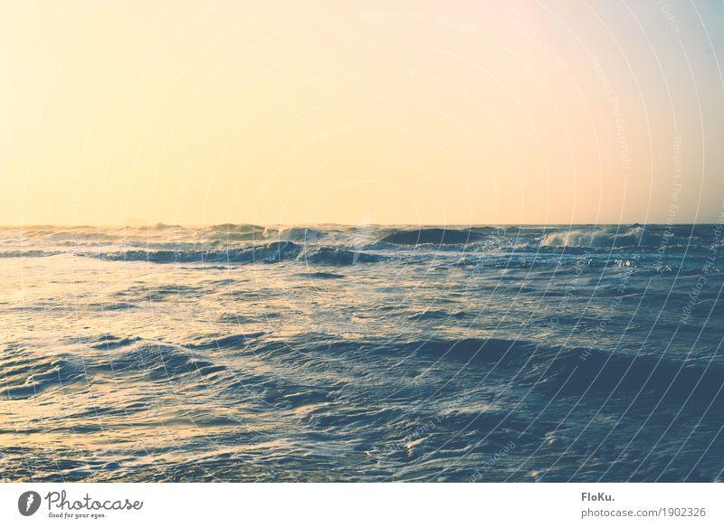 Nordsee in gold Ferien & Urlaub & Reisen Ferne Freiheit Sommerurlaub Meer Wellen Umwelt Natur Urelemente Wasser Himmel Wolkenloser Himmel Horizont Sonne