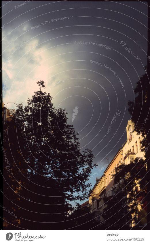 Himmel über Kreuzberg Himmel Natur Baum Sommer Wolken Haus dunkel Gebäude Wetter Wind Angst gefährlich Urelemente Sturm Unwetter Gewitter