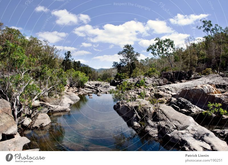 Alligator Creek Himmel Natur Wasser schön Pflanze Sommer Ferien & Urlaub & Reisen Wolken ruhig Einsamkeit Ferne Landschaft Umwelt Luft Felsen Gewässer