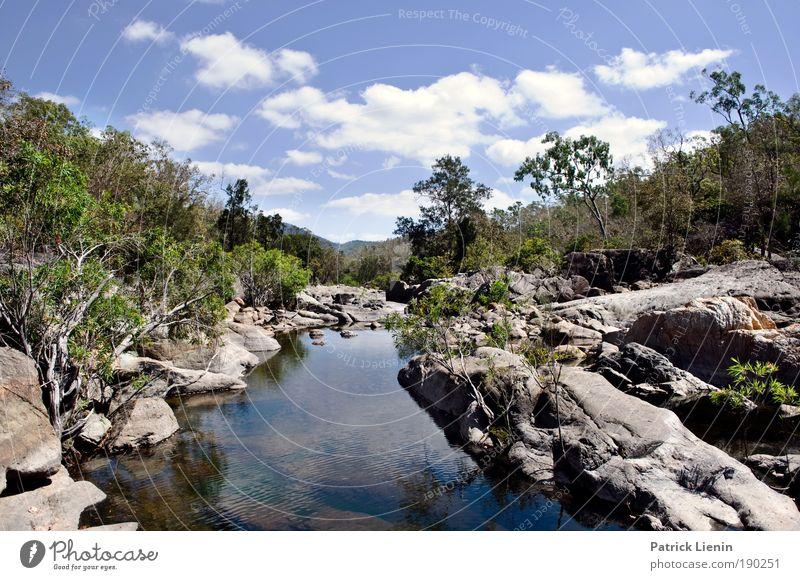 Alligator Creek Umwelt Natur Landschaft Pflanze Luft Wasser Himmel Wolken Sommer Bach Ferien & Urlaub & Reisen Felsen schön Australien Eukalyptusbaum Einsamkeit